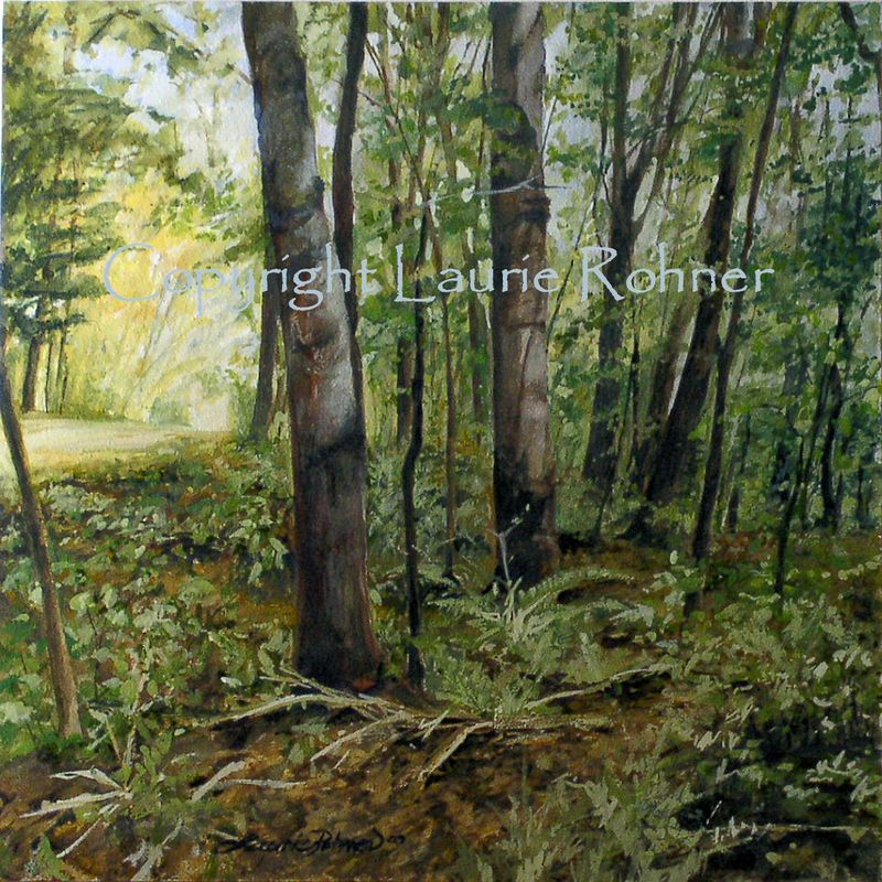 Shaded Woods Etsy copyright