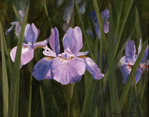 Wild Iris etsy